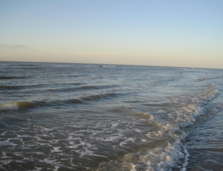 Nordseeküste in Flevoland