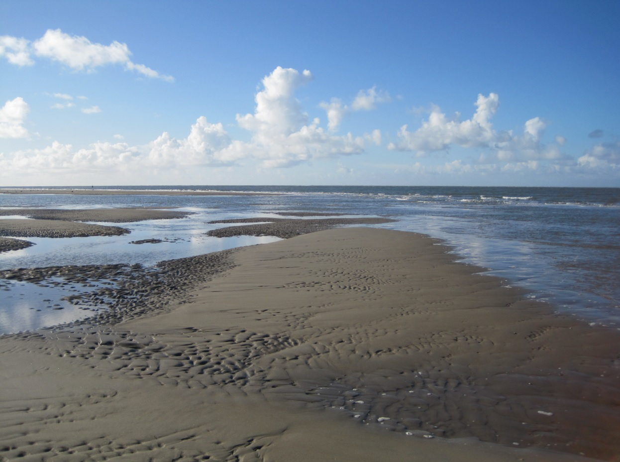 Sommertraum - Nordsee in Holland