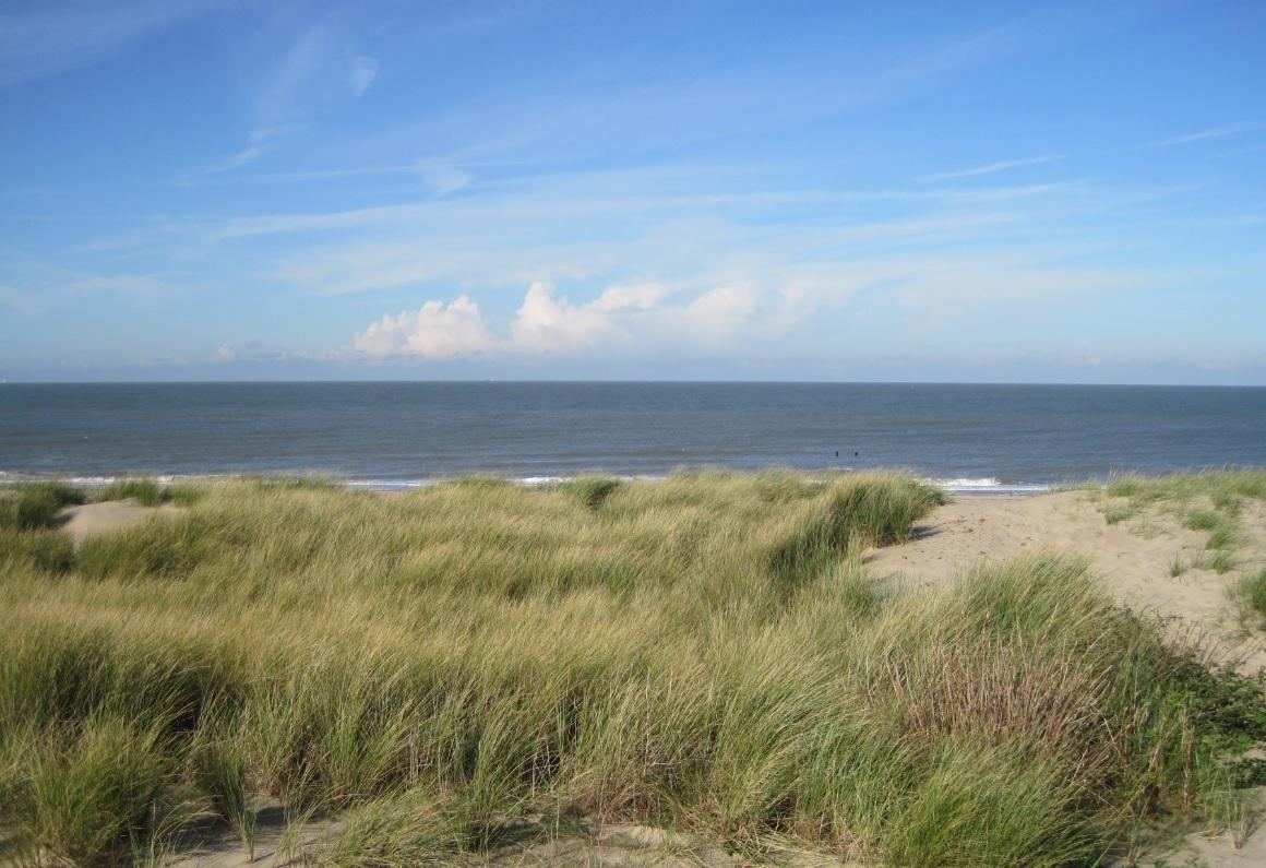 Ausflug an die Nordsee in Holland