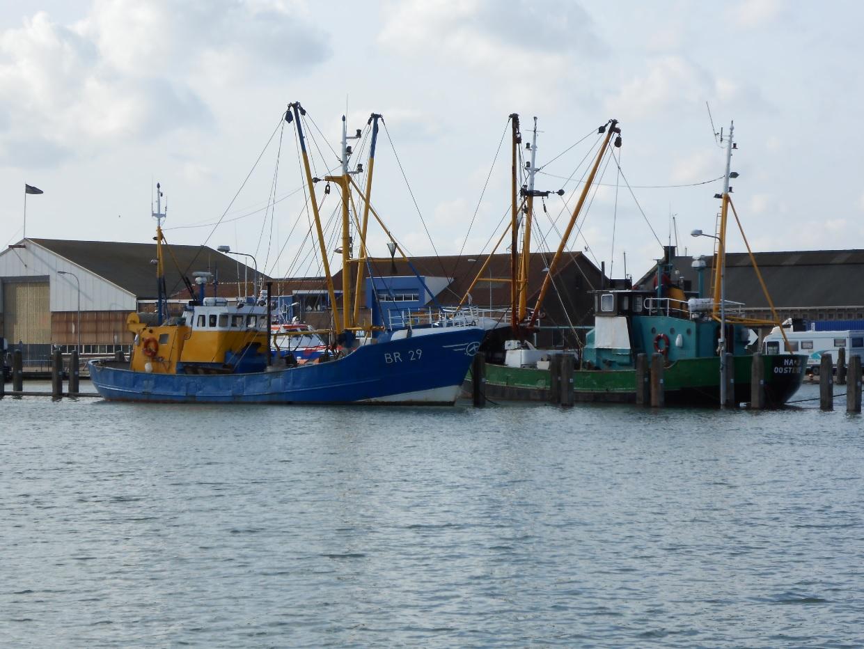 Hafen in Breskens