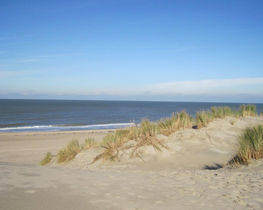 Küste in den Niederlanden
