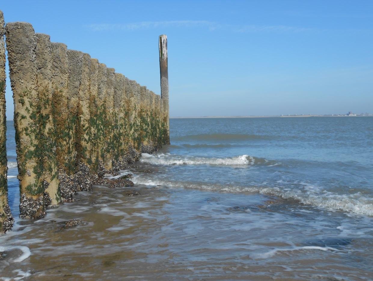 Nordsee bei Breskens