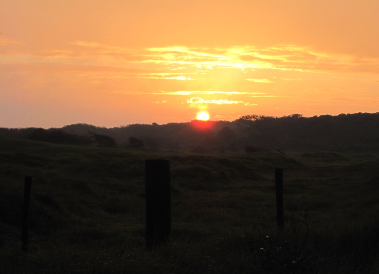 Sonne in den Niederlanden