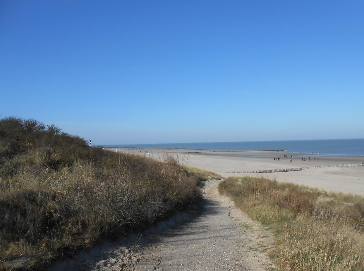 Strand bei Breskens