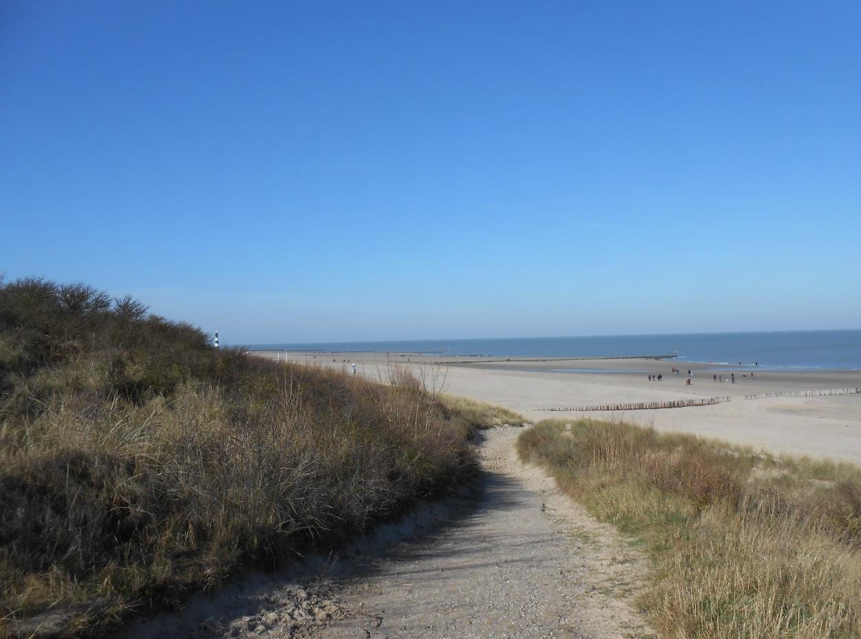 Strand in Breskens