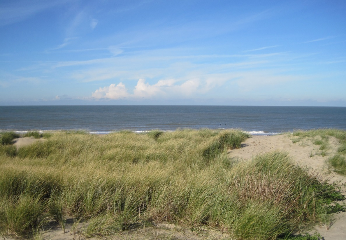Strand in Holland an der Nordsee