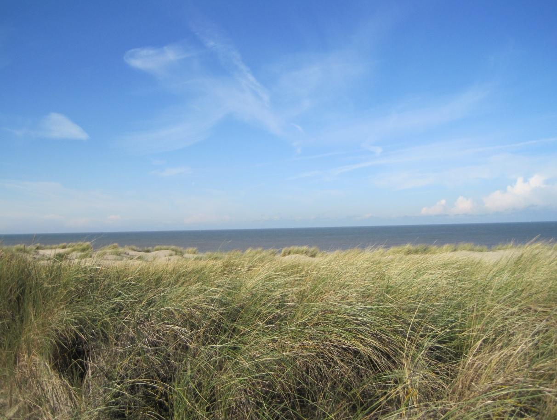 Dünen an der holländischen Nordsee