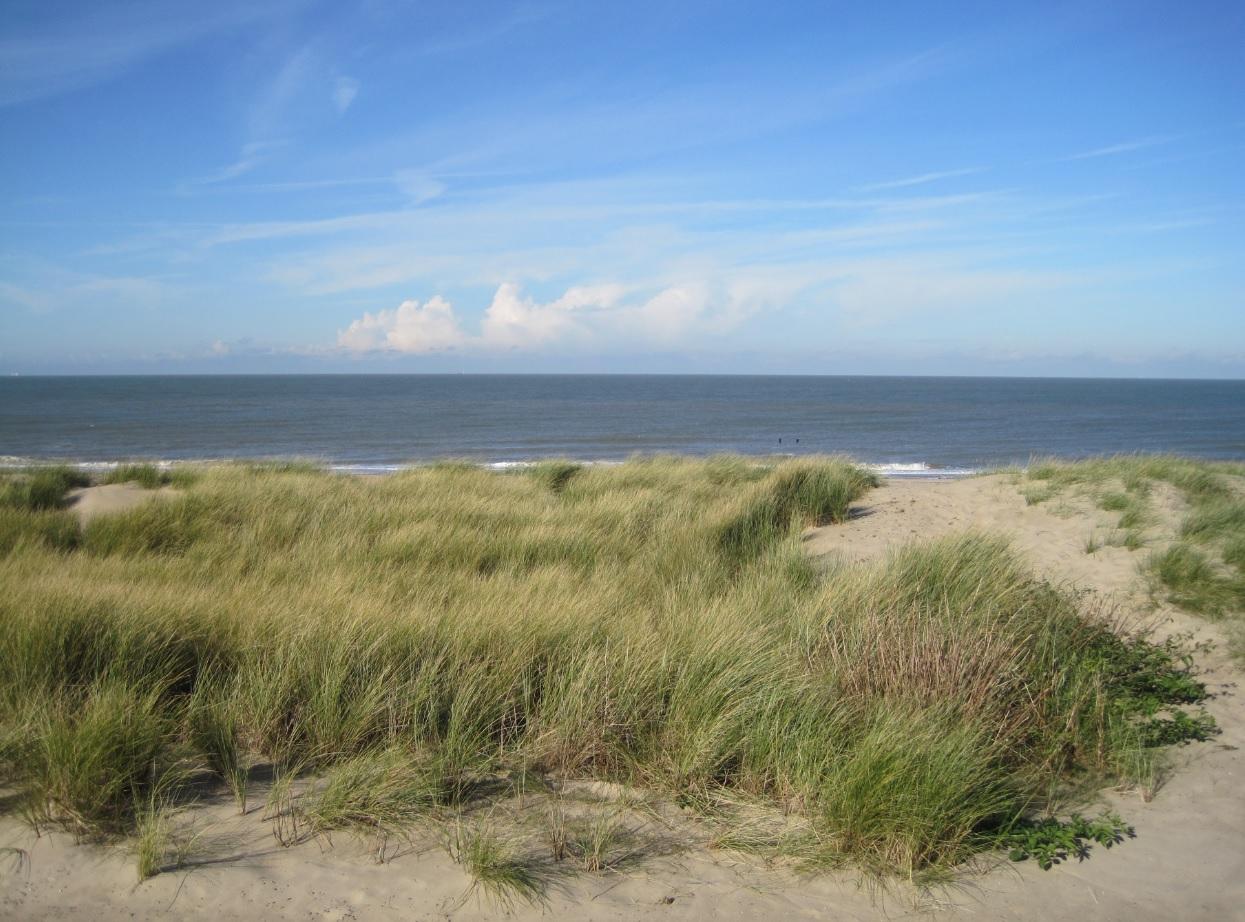 Sommerurlaub 2015 in Holland buchen
