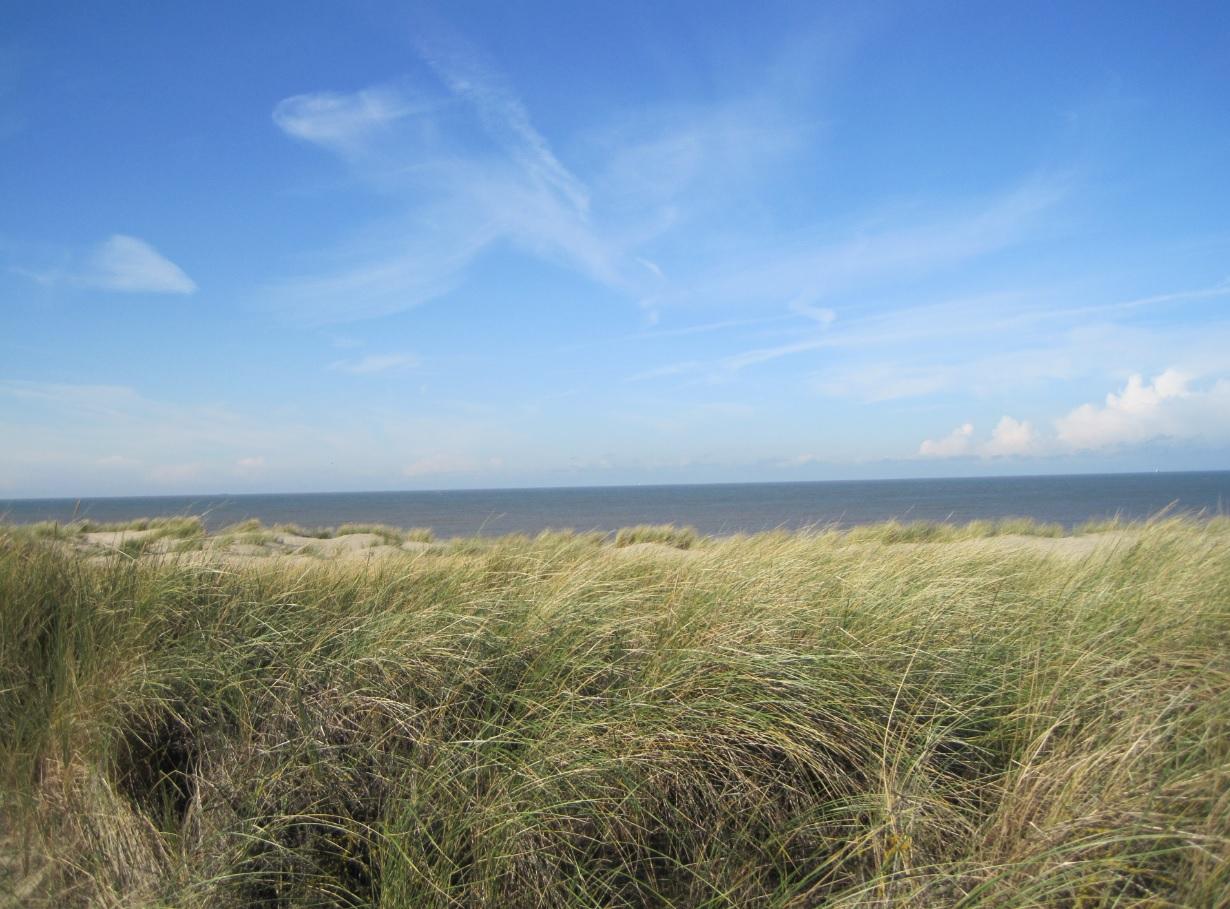 Unverbaute Sicht auf die Nordsee in den Niederlanden