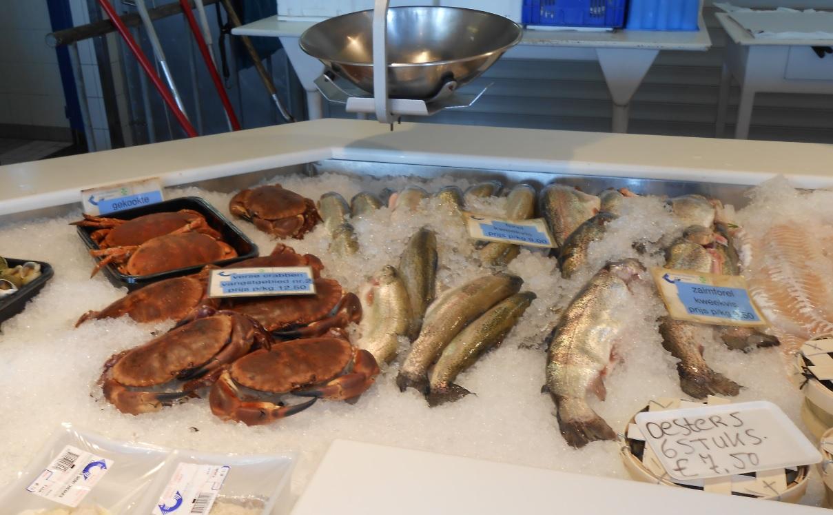 Fisch und Krabben an der Nordsee