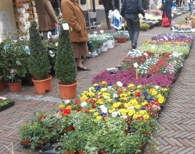 Wochenmarkt mit Pflanzen in Ouddorp