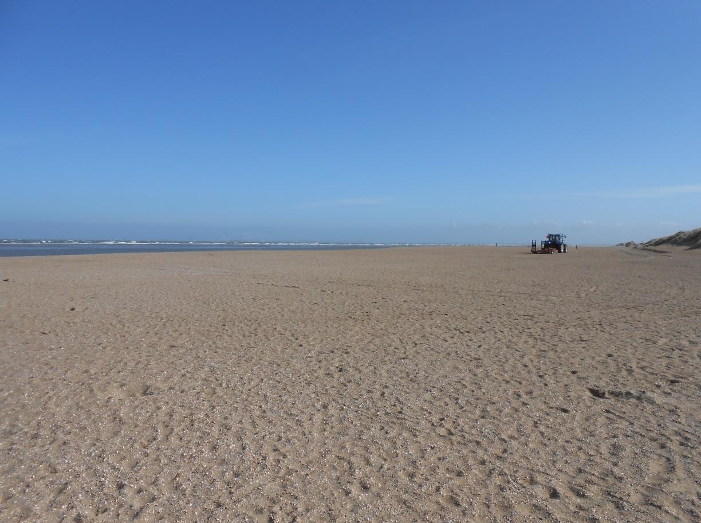 Strand südlich von Rotterdam bei Ouddorp